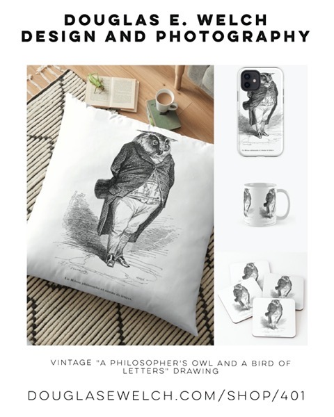 "New Design: Vintage ""A Philosopher's Owl and a Bird of Letters"" Drawing [For Sale]"