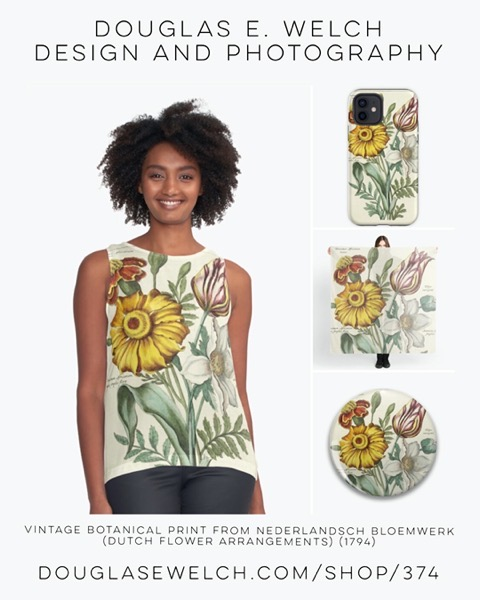 New Design: Vintage Botanical Print from Nederlandsch bloemwerk (Dutch flower arrangements) (1794) [Shopping]