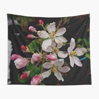 Tapestry 720x pad 600x600 f8f8f8 3