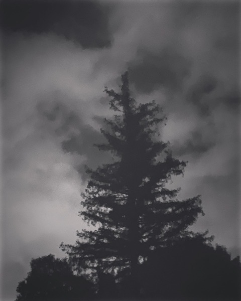 On A Cloudy Night Walk Home via Instagram