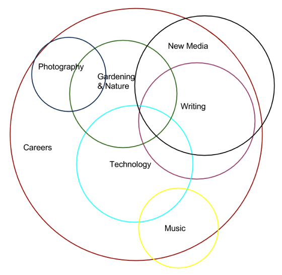 Diagram of Douglas' Skills and Interests