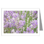 Lavender Photo Notecards Bag