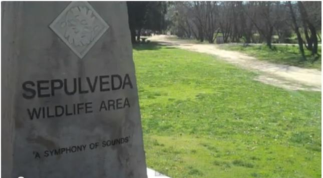 Video: Places LA: Sepulveda Basin Wildlife Area