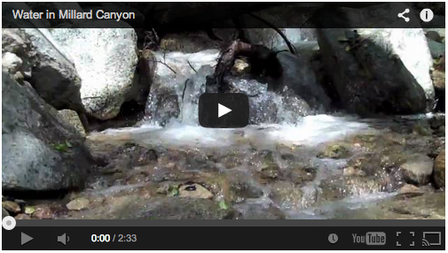 Video: Millard Canyon, Angeles National Forest