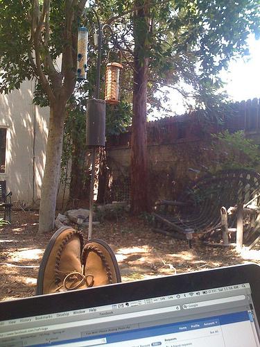 Working(?) in the garden