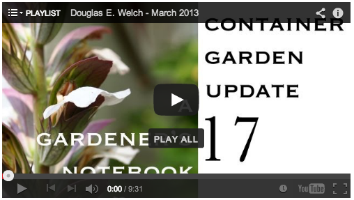 Looking Back – Videos from Douglas E. Welch – March 2013