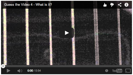 Video: Guess the video 4: What is it?