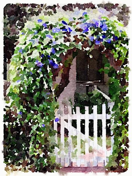 Art: Morning Glory Gate