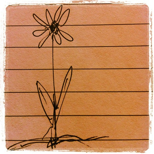 Photo: One flower on the page via #instagram