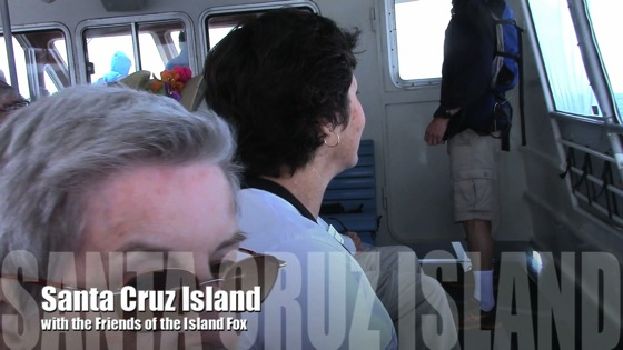 Video: Santa Cruz Island Trip with Friends of the Island Fox – May 3, 2014