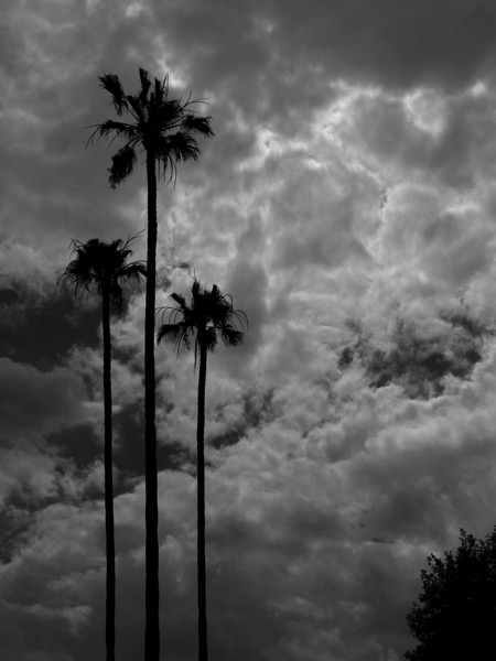 Photo: Stormy Skies over the San Fernando Valley