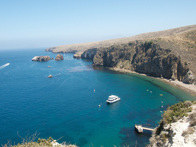 Photos: A Trip to Santa Cruz Island with Friends of the Island Fox