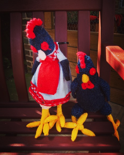 Knitted chickens. Thirsk filled with knitted animals for James Herriot 100th Birthday via Instagram [Photo]