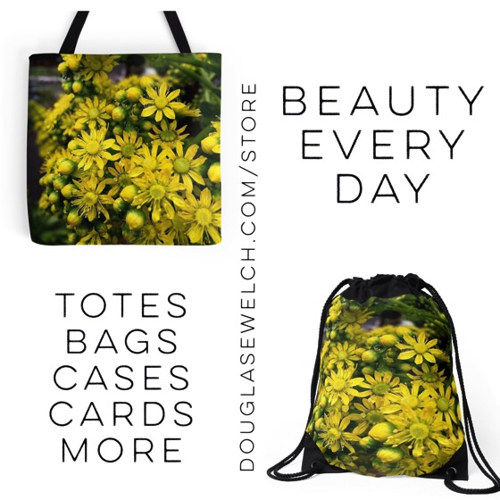 Shop for these Aeonium Flowers Totes, Drawstring Bags and Much More! [Products]