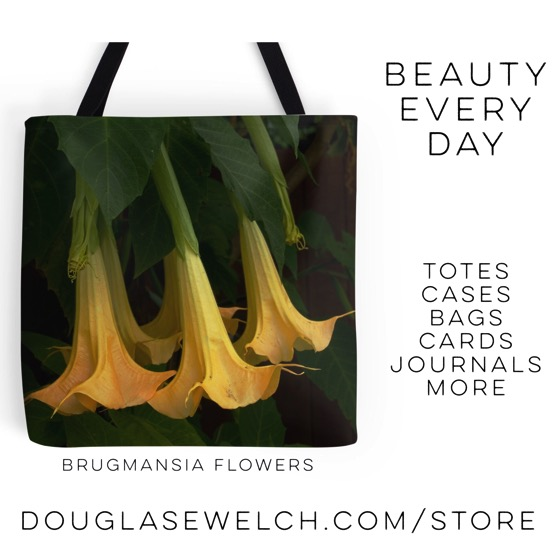 20% Off All Products Today – Get these Brugmansia Flowers Tote Bag and much more!