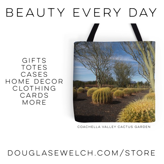 """Buy this """"Coachella Cactus Garden"""" Tote and much more from Douglas E. Welch [Gifts]"""