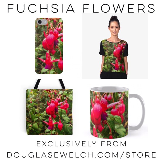 """Get these """"Fuchsia Flowers"""" cases, tops, totes and more exclusively from Douglas E. Welch"""