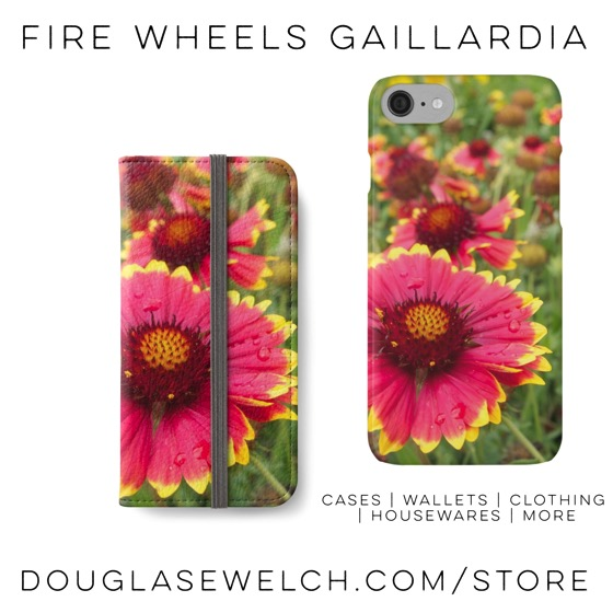 Lovely Firewheels Gaillardia iPhone Wallets and Cases exclusively from Douglas E. Welch
