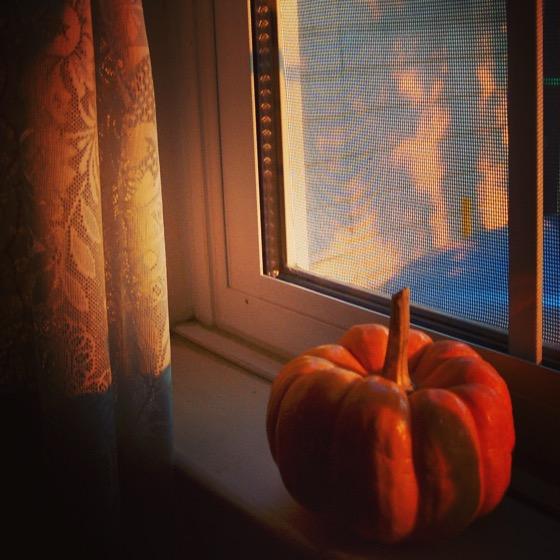 Harvest Time [Photo]