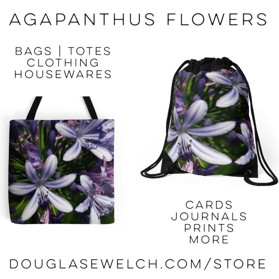Get these Agapanthus Flowers on a variety of products