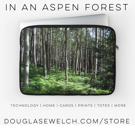 In An aspen Forest Laptop Sleeve and Much More from Douglas E. Welch
