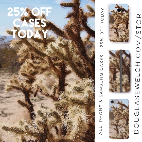 25% Off All iPhone and Samsung Cases today – Gift these Cholla Cactus (and over 100 more designs) to your friends and family today!