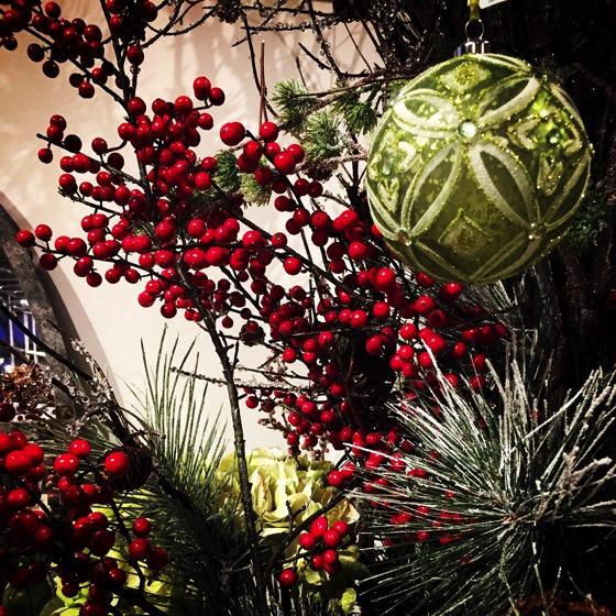 Christmas Berries [Photo]