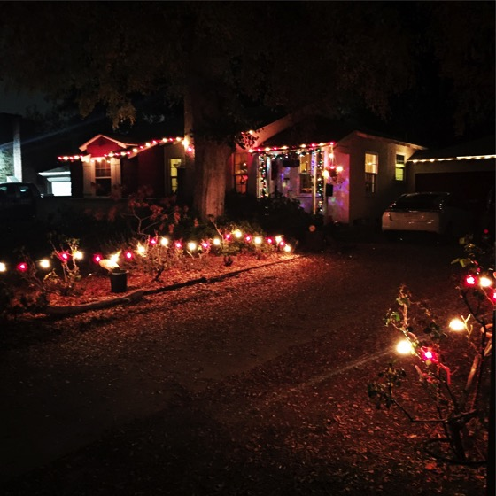 Christmas Lights on the House this year [Photo]
