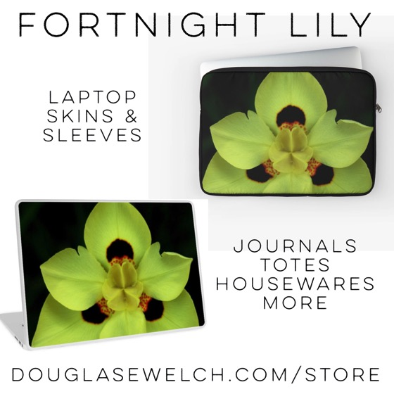 Dress up your laptop with these Fortnight Lily Skins and Sleeves and much more!