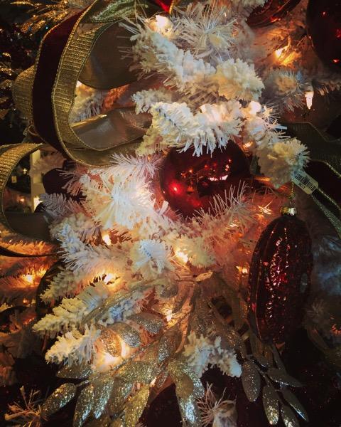 Oh, Christmas Tree No.1 [Photo]