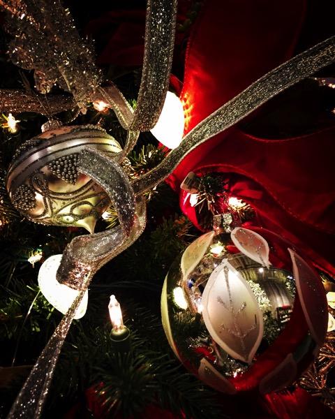 Oh Christmas Tree 3 [Photo]