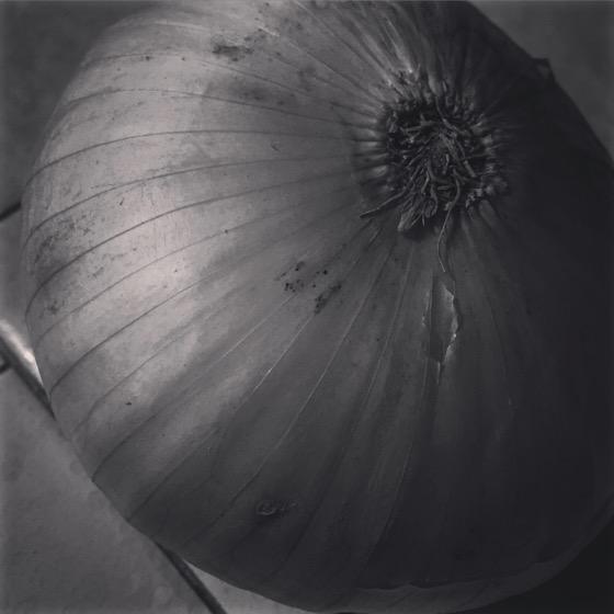 Onion [Photo]
