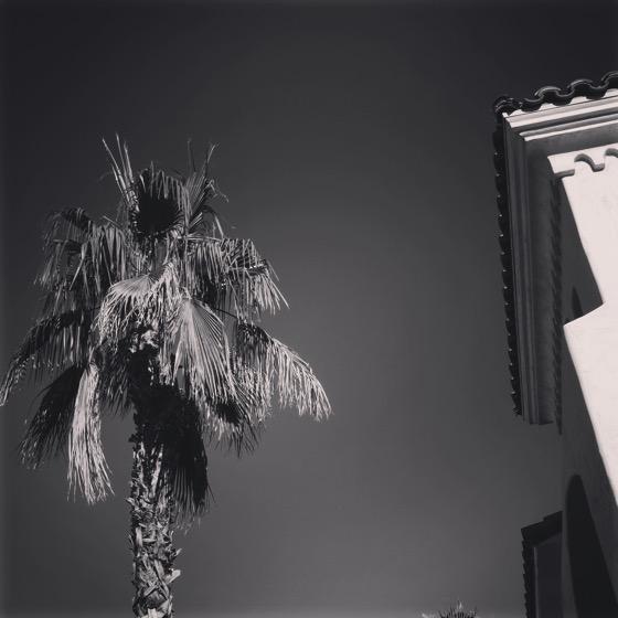 Winter in the desert [Photo]