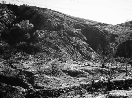 Little Tujunga Canyon, Los Angeles in Black and White