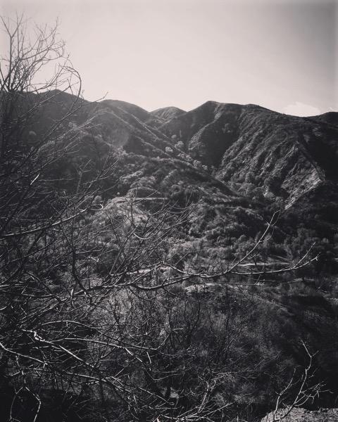 Placerita Canyon Burn Area