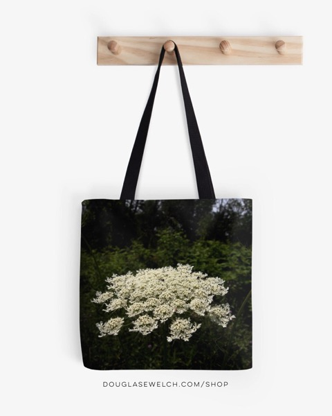 Queen Anne's Lace Totes and Much More!