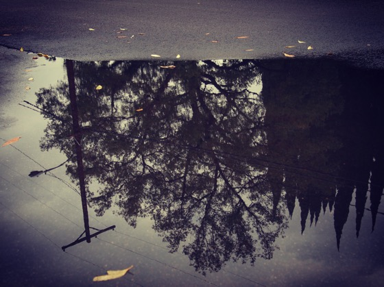 The World Turned Upside Down [Photo]