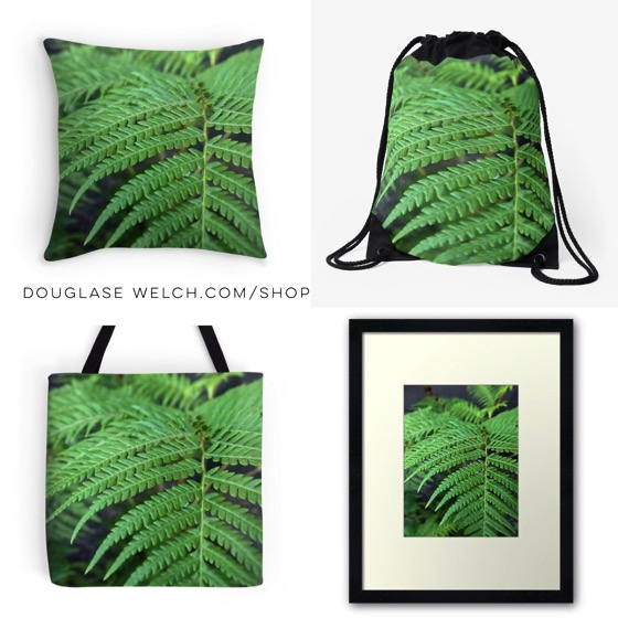 """Fern in the Forest"" Totes, pillows, prints and more!"