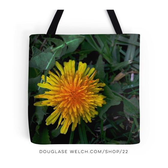 Behold The Humble Dandelion – Totes, Cards, Housewares, More