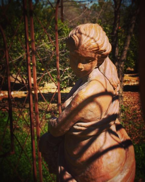 Look back in the garden