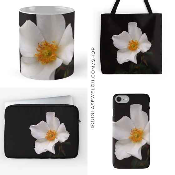 """""""California Winter Rose"""" Totes, iPhone cases, laptop sleeves and more"""