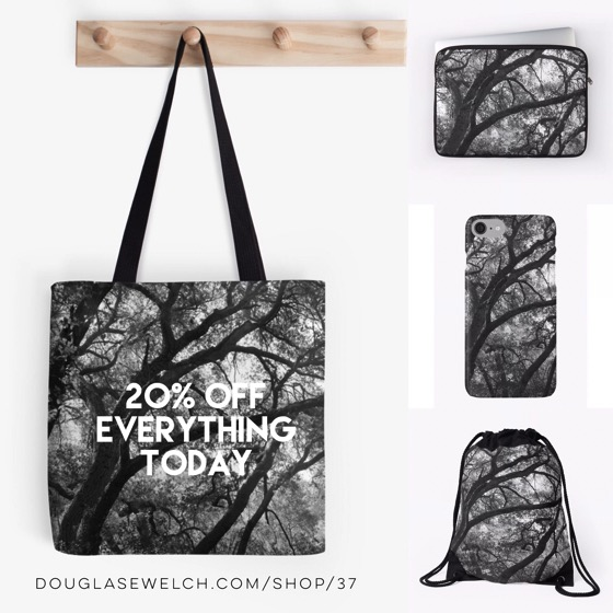 Strikingly Stark Oak Trees in the Santa Monica Mountains – 20% Off Everything Today