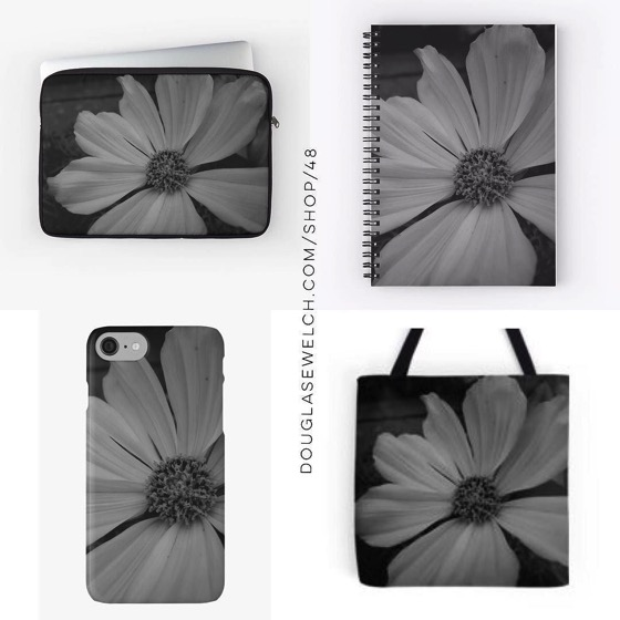 NEW PRODUCTS! White Flower Shines in Black and White – Totes, Laptop Sleeves, Smartphone Cases, Notebooks and Much More