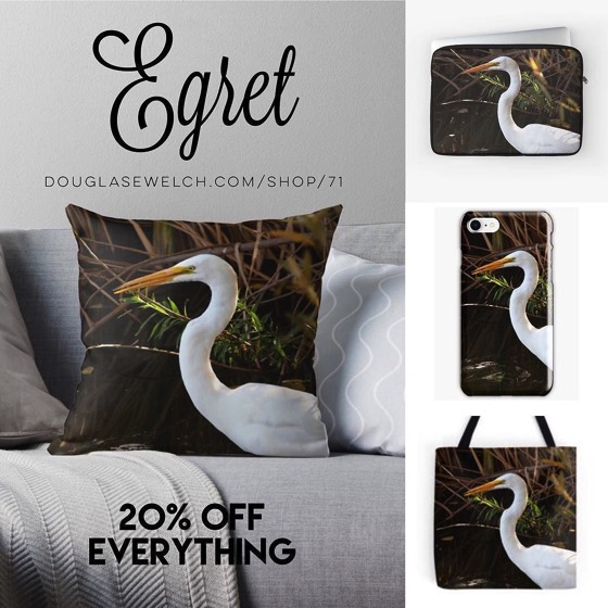 20% Off Everything Today – An Egret on Pillows, Totes, Smartphone Cases and More!