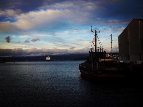 South Island Ferry arrives in Wellington Harbor via Instagram