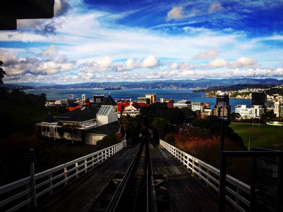 Wellington Harbor from the top of the cable car line via Instagram