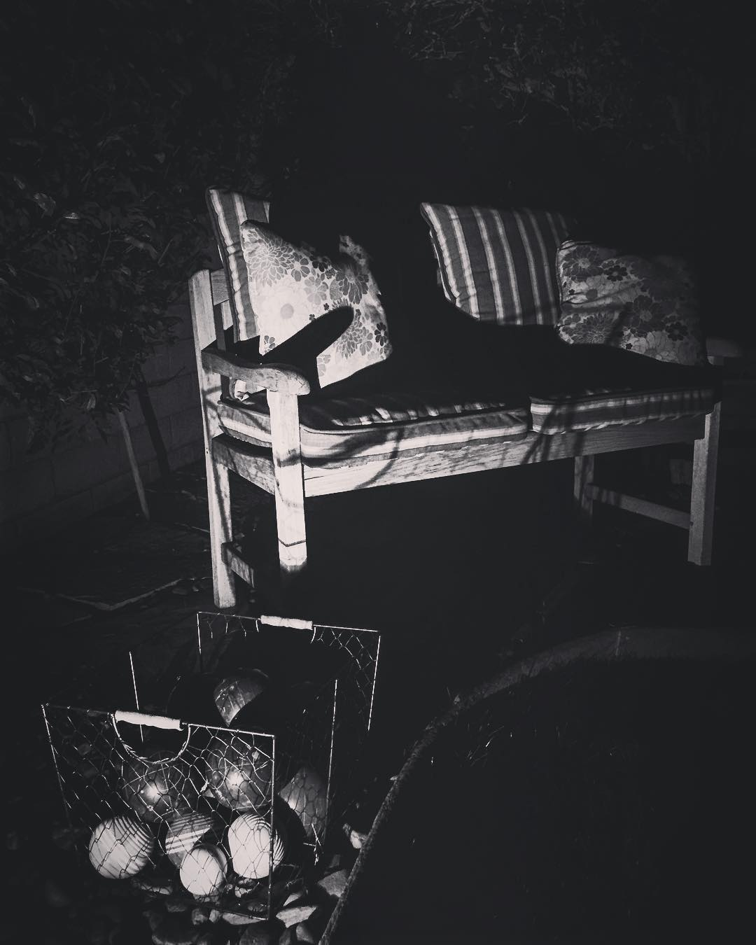 My Los Angeles 16 Black and White – In The Night Garden