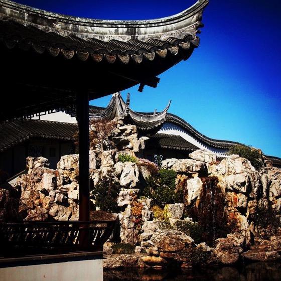 Dunedin Chinese Garden via Instagram
