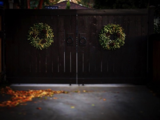 California Christmas via Instagram