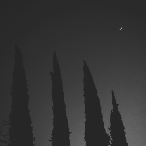 Winter Moonrise via Instagram